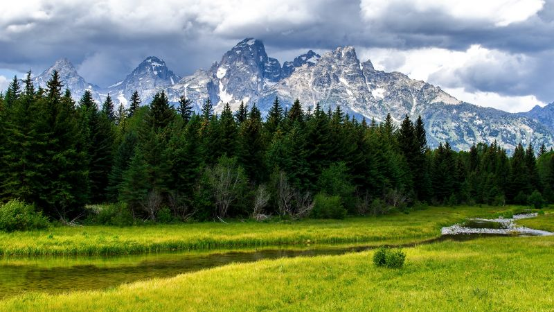 Grand Teton National Park, Green Meadow, Wyoming, Landscape, Water Stream, Forest, Green Trees, Glacier mountains, Snow covered, Mountain range, Thick Clouds, Scenery, Wallpaper