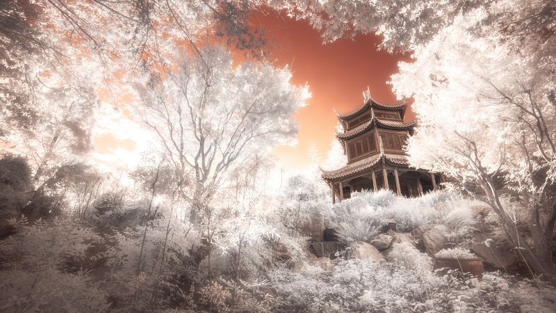 Pagoda, Temple, Ancient architecture, Trees, Infrared vision, 5K, Wallpaper