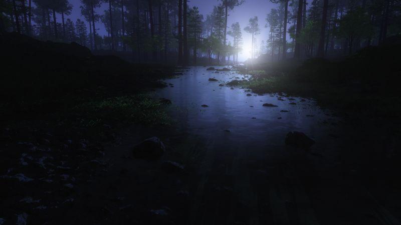 Dark Forest, Water Stream, Trees, Landscape, Woods, Night time, Wallpaper