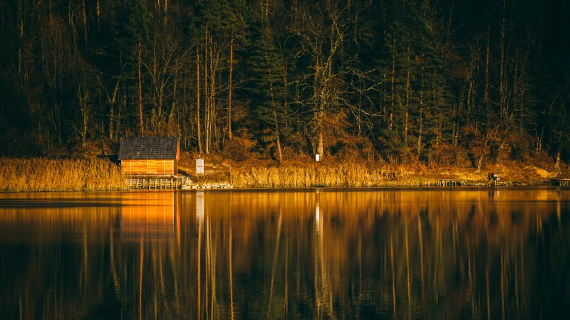 River, Forest, Wooden House, Reflection, Tall Trees, Landscape, Vacation, 5K, Wallpaper
