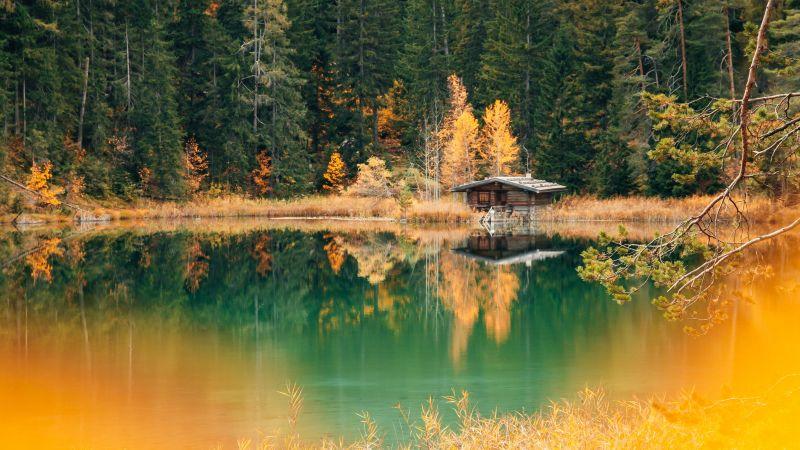 Lake house, Forest, Green Trees, Alpine trees, Reflection, Landscape, Scenery, 5K, Wallpaper