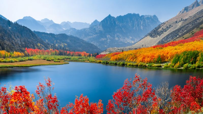 Autumn trees, Lake, Mountain range, Day time, Landscape, Long exposure, Scenery, Beautiful, 5K, Wallpaper