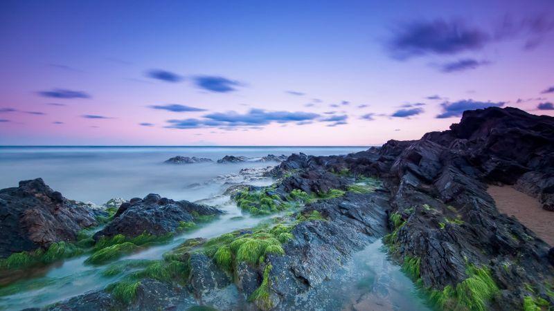 Rocky coast, Beach, Long exposure, Seascape, Horizon, Clouds, Green Moss, Evening sky, Wallpaper