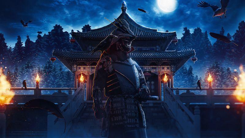Samurai, Bushido, Warrior, Japan, Middle Ages, Wallpaper