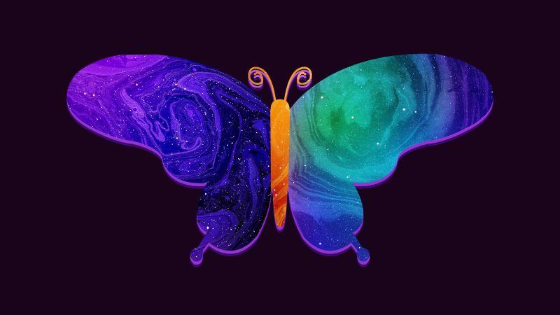 Butterfly, Colorful, Girly, Vivid, Dark background, Digital Art, Wallpaper