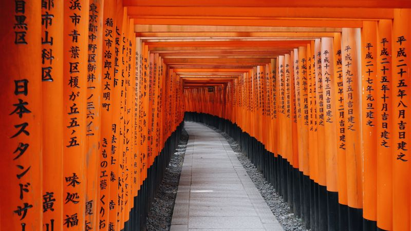 Fushimi Inari Taisha, Shrine, Kyoto, Japan, Orange, Wallpaper