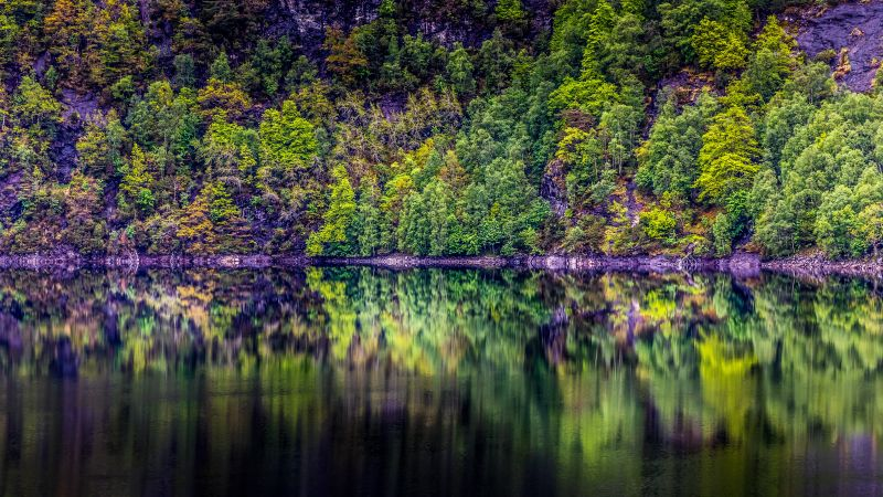 Rainforest, Cliff, Rock, Trees, Lake, River, Forest, Reflection, Norway, 5K, Wallpaper