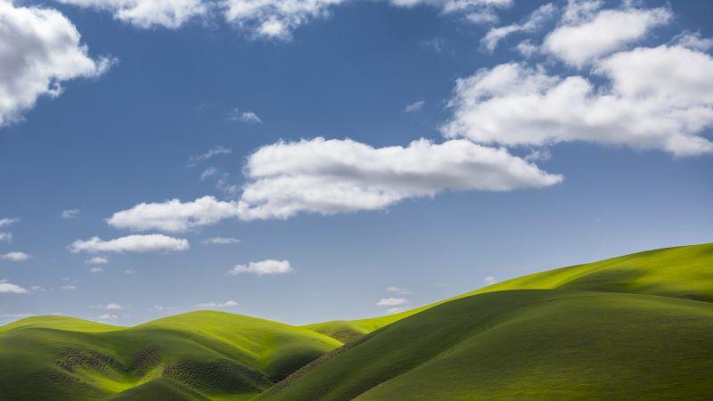 Landscape, Scenery, Green Fields, Clouds, Sunny day, 5K, Wallpaper