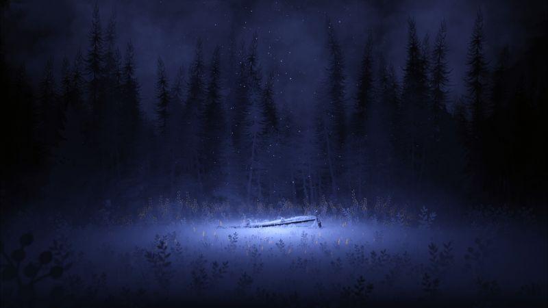 Light, Night, Forest, Winter, Foggy, Dark, Wallpaper