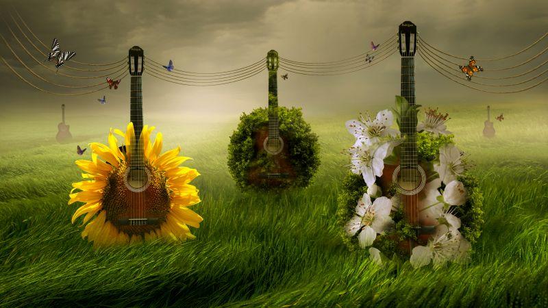 Guitars, Green Grass, Foggy, Floral, Surreal, 5K, Wallpaper