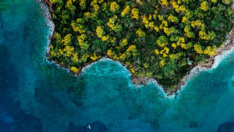 Fantasy Island, Aerial view, Forest, Ocean, 2020, 5K, Wallpaper