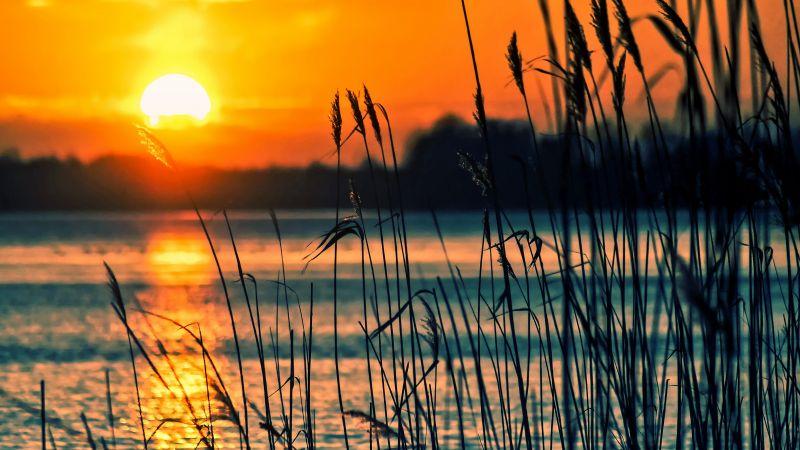 Sunset, Lake, Backlight, Scenery, Dusk, Silhouette, Landscape, Orange sky, Wallpaper