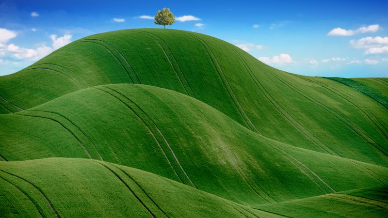 Green Meadow, Countryside, Agriculture, Hills, Blue Sky, Landscape, Scenery, Wallpaper