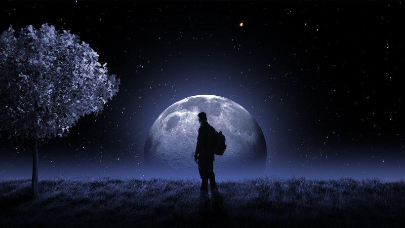 Full moon, Night sky, Stars, Moon light, Tree, Man, Surreal, Wallpaper