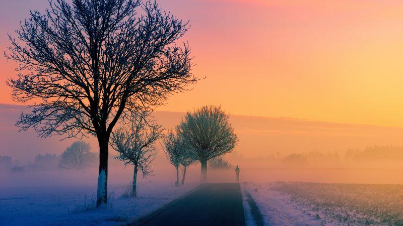 Golden hour, Foggy, Sunrise, Morning, Winter, Road, 5K, Wallpaper