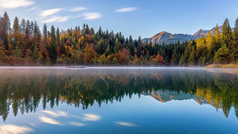 Crestasee Lake, Autumn trees, Switzerland, Reflection, Mirror Lake, Fog, Landscape, Scenery, 5K, Wallpaper