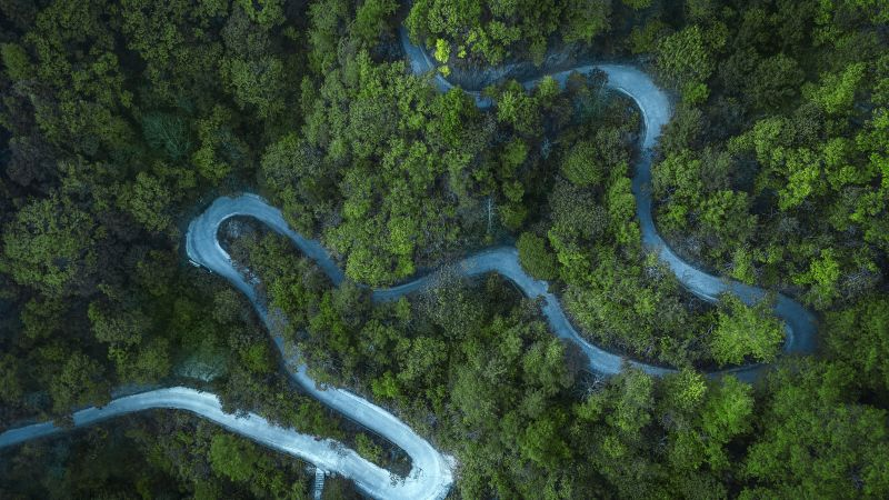Forest, Road, Aerial view, Drone photo, Cold, Landscape, Wallpaper