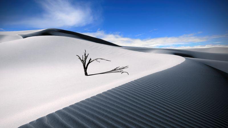Sand Dunes, Desert, Blue Sky, Landscape, Lone tree, Digital composition, Aesthetic, Wallpaper