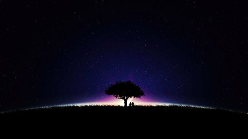 Couple, Night, Romantic, Dark Sky, Lone tree, Silhouette, Together, Starry sky, Wallpaper