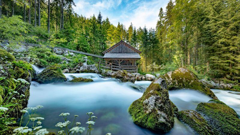Gollinger Mill, Austria, Flowing Water, Gollinger Wasserfall, Famous Place, Forest, Greenery, Landscape, Green Moss, Panoramic, 5K, 8K, Wallpaper