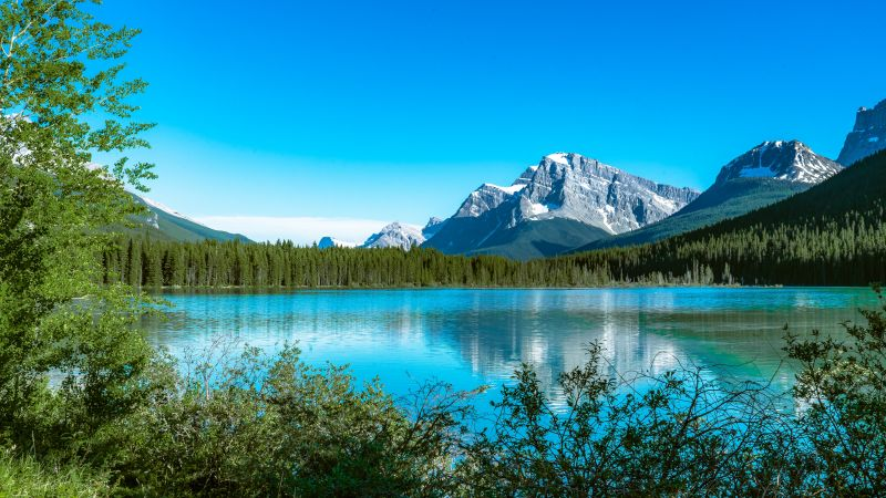 Bow Lake, Canada, Snow covered, Mountains, Blue Sky, Reflection, Landscape, Scenery, Beautiful, 5K, Wallpaper