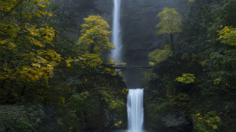 Multnomah Falls, Oregon, Forest, Waterfalls, Green Moss, Rocks, Cliff, Greenery, Bridge, Landscape, Scenery, Wallpaper