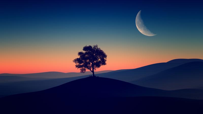 Solitude Tree, Crescent Moon, Silhouette, Sunset, Dusk, Gradient, Landscape, Scenic, Clear sky, Wallpaper
