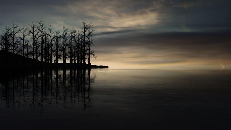 Sunset, Dry trees, Silhouette, Dusk, Lake, Wallpaper