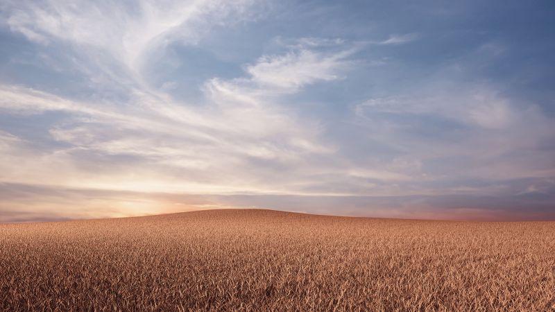 Evening, Dusk, Landscape, Dry fields, Wallpaper