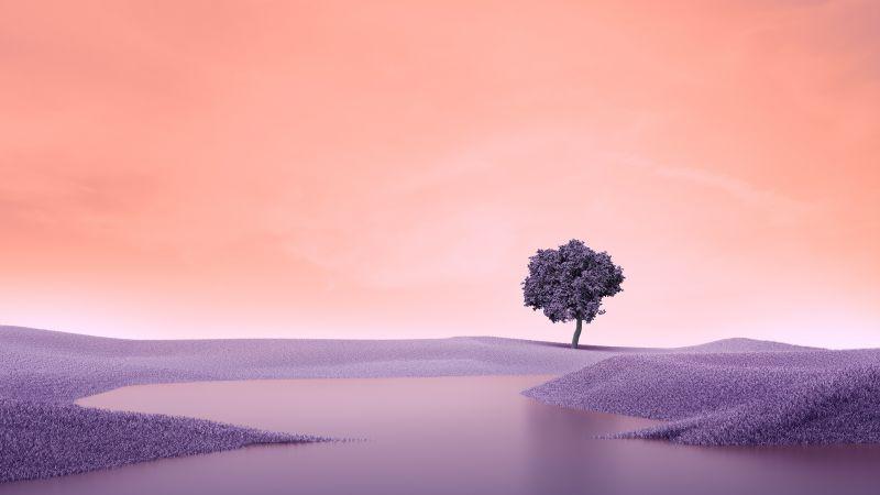 Lone tree, Landscape, Spring, Lake, Surreal, Digital composition, Aesthetic, Wallpaper