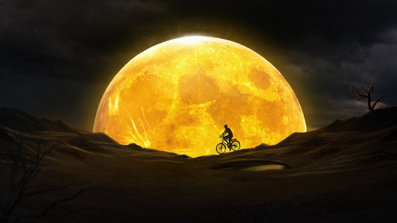 Moon, Night, Silhouette, Yellow, Dream, Surreal, Desert, Bicycle, Wallpaper
