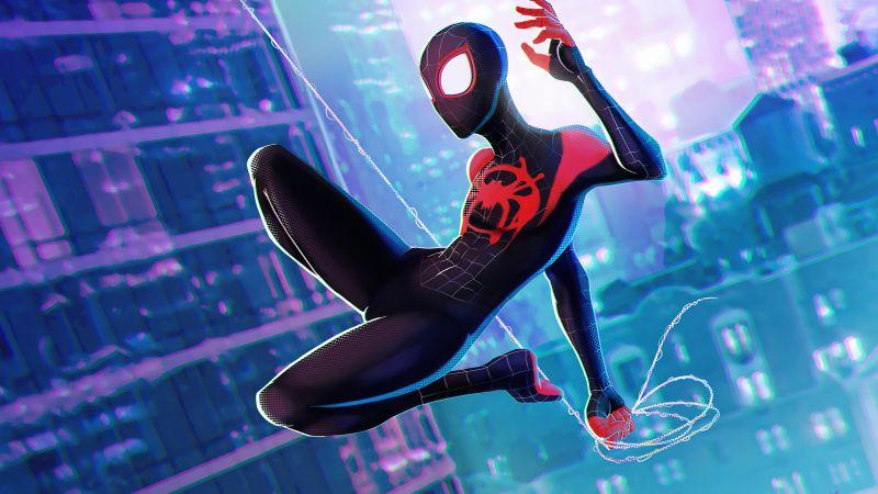 Spider-Man, Miles Morales, Spider-Man: Into the Spider-Verse, Wallpaper