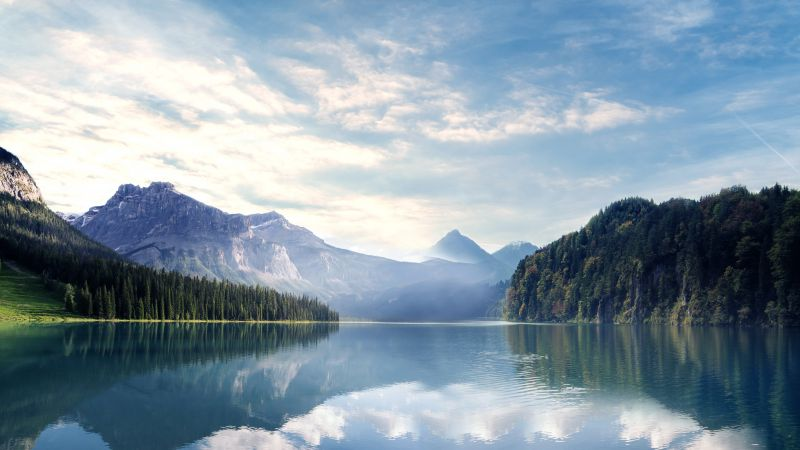 River, Mountains, Forest, Sunny day, Landscape, 5K, 8K, Wallpaper