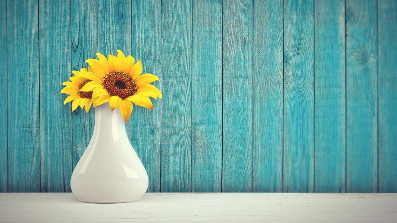 Sunflowers, Flower vase, Wooden background, Teal, Wallpaper