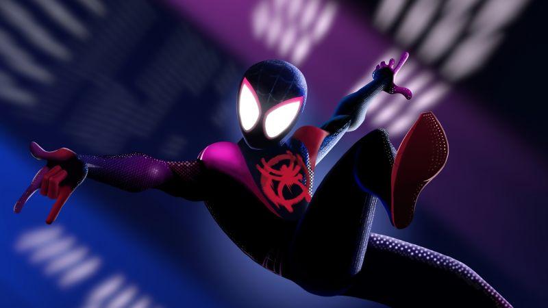 Miles Morales, Spider-Man, Marvel Comics, Wallpaper