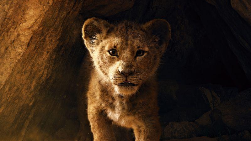 The Lion King, Simba, Lion cub, 5K, Wallpaper