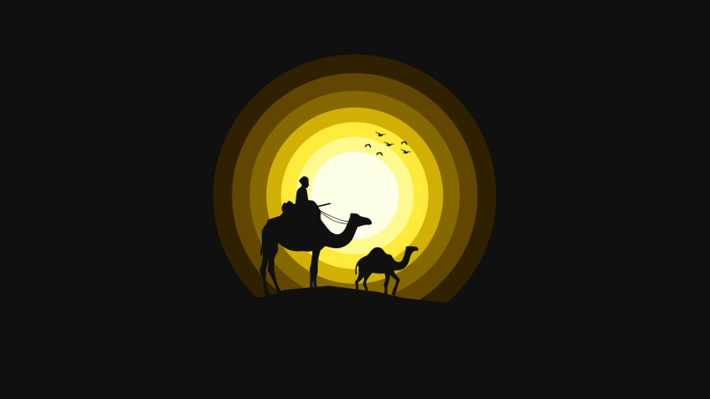 Camels, Sun, Silhouette, Yellow, Black background, Wallpaper