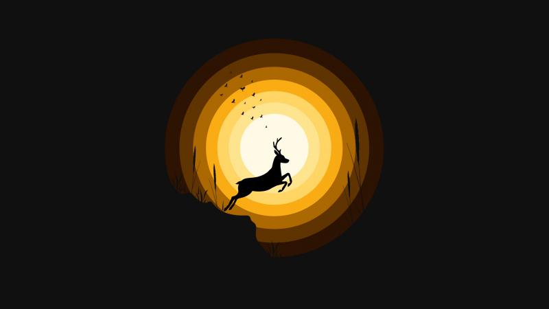 Deer, Silhouette, Sun, Dark background, Wallpaper