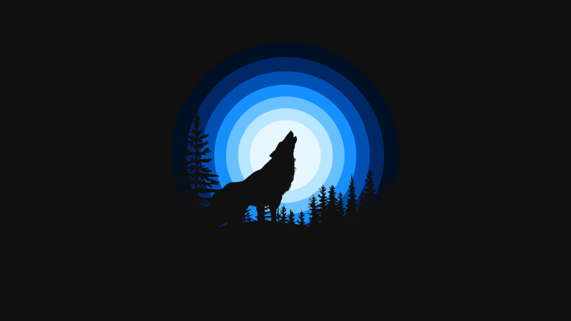 Wolf, Howling, Silhouette, Black background, Blue, Wallpaper