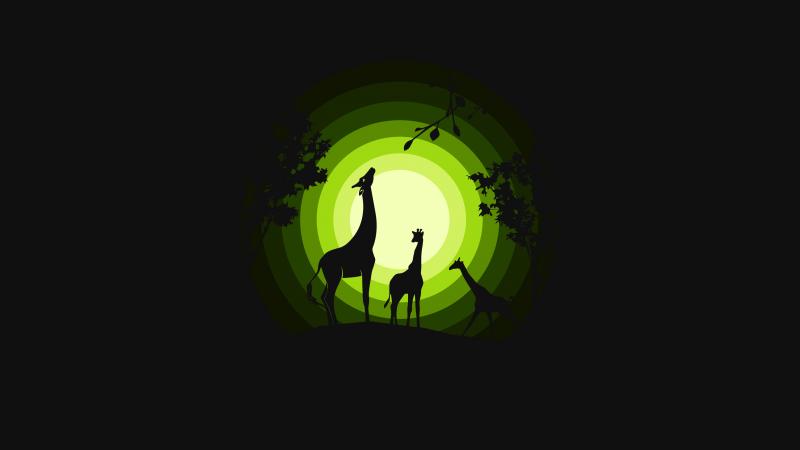 Giraffe, Giraffe cubs, Silhouette, Forest, Moon, Green, Black background, Wallpaper