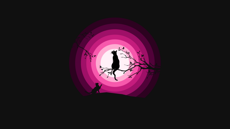 Cats, Moon, Pink, Silhouette, Black background, Wallpaper