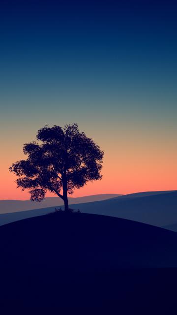 Solitude Tree, Crescent Moon, Silhouette, Sunset, Dusk, Gradient, Landscape, Scenic, Clear sky